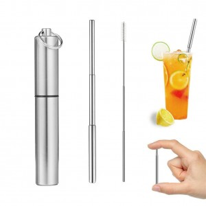Stainless Steel EP Telescopic Straw